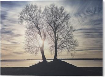 PVC Tavla Tvilling träd silhuetter på en flodbank vid solnedgången, färgtonad bild.