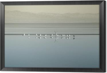 Quadro in Cornice Vogelschwarm am Saltonsee / Die Brutkolonie von Vogelschwärmen sono Saltonsee in Kalifornien.