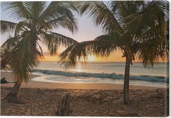 Quadro su Tela Alberi tramonto spiaggia di palme onde
