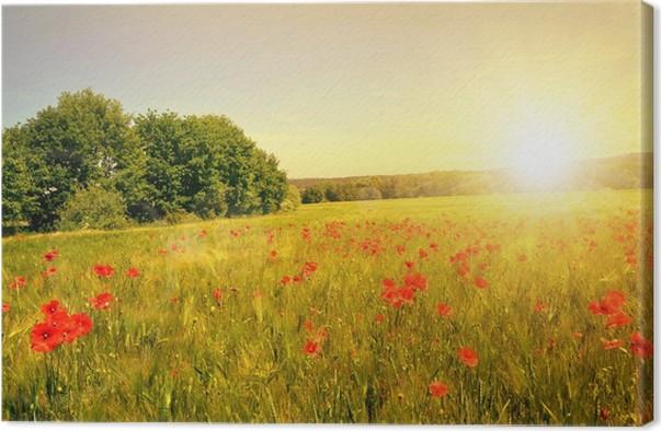 Quadro su tela campo di grano con papaveri rossi al for Quadri con papaveri rossi