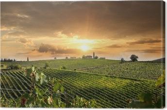 Quadro su Tela Chianti paesaggio vigneto in Toscana, Italia