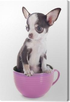 Quadro su Tela Cucciolo di chihuahua in una tazza
