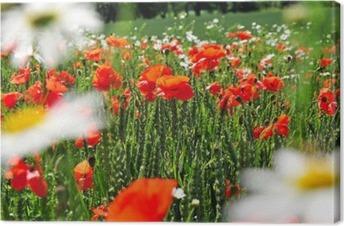 Quadro su Tela Estate molla nave prato di fiori • Pixers® - Viviamo ...