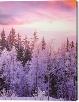 Quadro su Tela Foresta di inverno