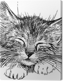 Quadro su Tela Gatto che dorme