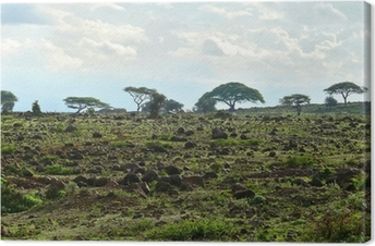 Quadro su Tela La natura del Kenya paesaggio. Kenya. Africa.