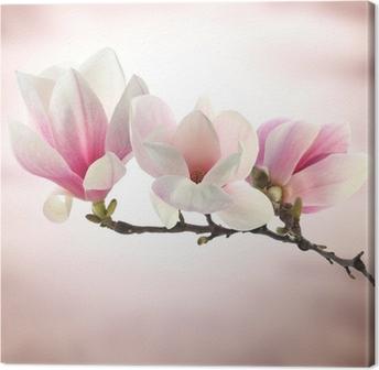 Quadro su Tela Magnolia