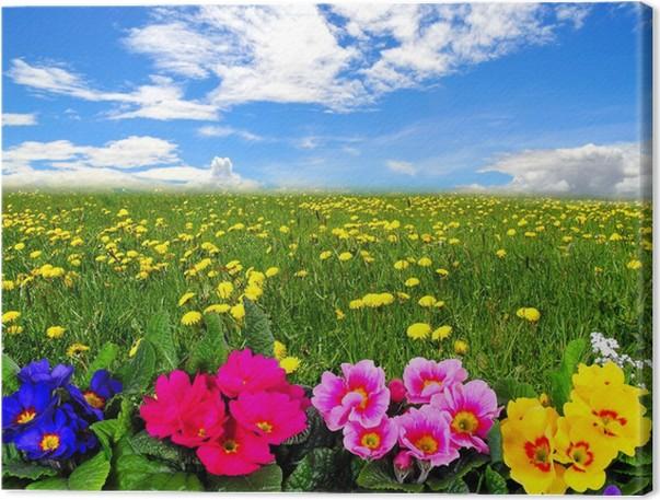 Quadro su Tela Nubi paesaggio prato di fiori • Pixers® - Viviamo per ...