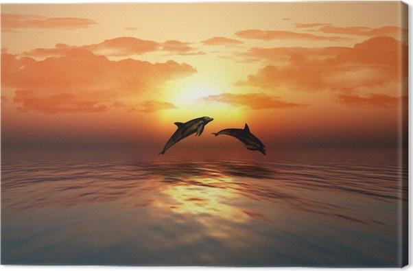 Immagini di immagini tramonto con delfini