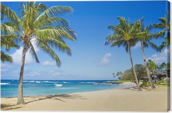 quadro su tela palme sulla spiaggia di sabbia in hawaii pixers viviamo per il cambiamento. Black Bedroom Furniture Sets. Home Design Ideas
