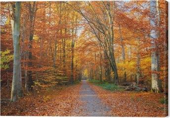 Quadro su Tela Percorso nella foresta di autunno