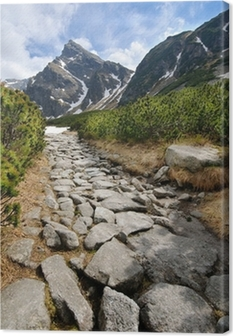 Quadro su Tela Polacco Tatra montagne