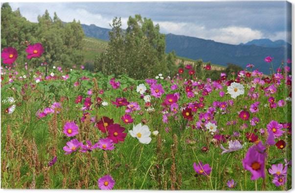 Quadro su Tela Prato di fiori selvatici • Pixers® - Viviamo per il ...