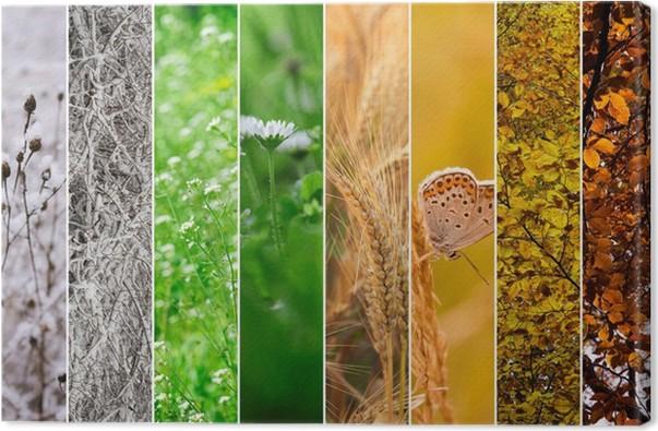 Risultati immagini per stagioni quadro