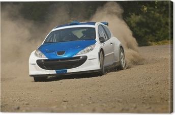 Quadro su Tela Rally car in azione - Peugeot 206 S2000