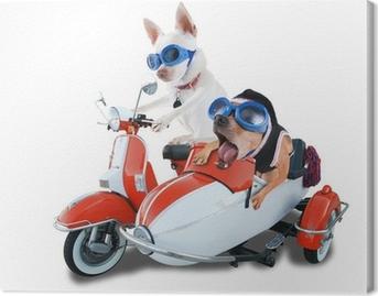 Quadro su Tela Scooter cani