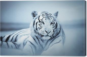 Quadro su Tela Tigre