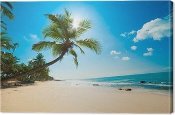 Quadro su Tela Tropical beach