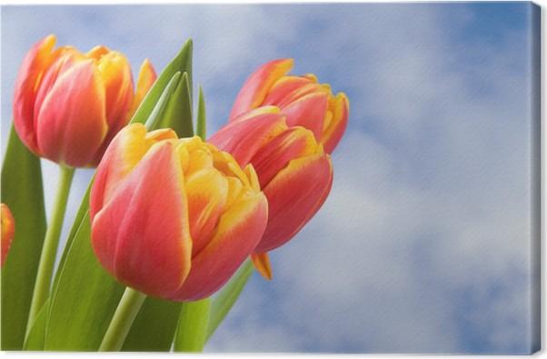 Quadro su Tela Tulipani rossi con bordo giallo • Pixers® - Viviamo ...