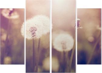 Quadriptychon Pusteblumen auf einer Wiese, Vintage-Stil