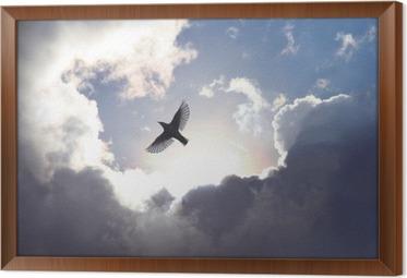 Quadro com Moldura Angel Bird in Heaven