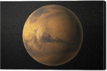 Quadro em Tela A view of planet Mars