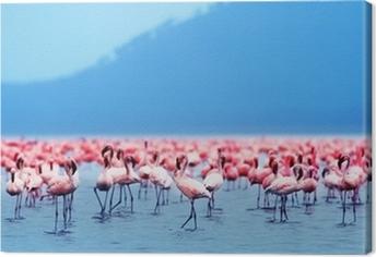 Quadro em Tela African flamingos