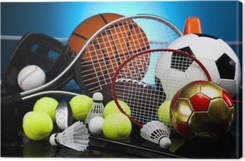 Quadro em Tela Assorted sports equipment
