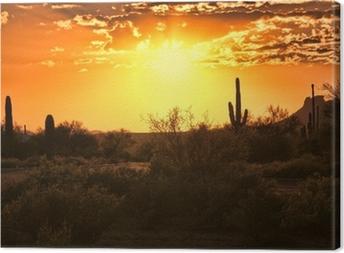 Quadro em Tela Beautiful sunset view of the Arizona desert with cacti