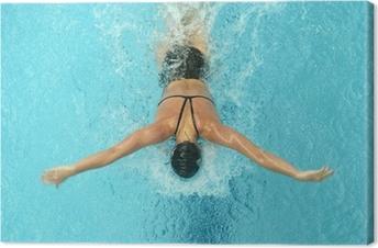 Quadro em Tela butterfly swimmer
