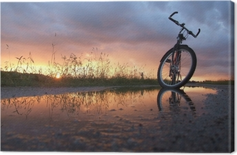 Quadro em Tela Bycicle in the puddle