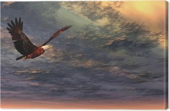 Quadro em Tela Eagle