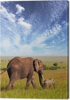 Quadro em Tela Elephant