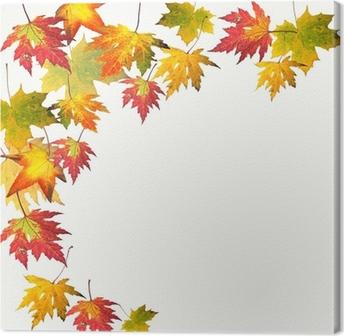 Quadro em Tela Farben des Herbstes: Bunte Ahorn-Blätter