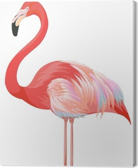 Quadro em Tela flamingo