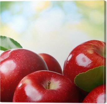 Quadro em Tela Fresh apples