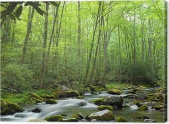 Quadro em Tela Jungle stream