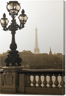 Quadro em Tela Lamppost on the bridge of Alexandre III in Paris, France