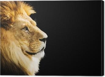 Quadro em Tela Lion portrait with copy space on black background