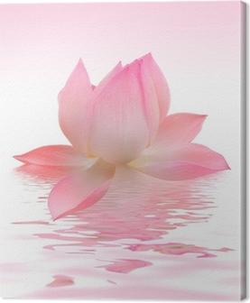 Quadro em Tela Lotus