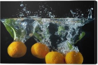 Quadro em Tela Orange splash