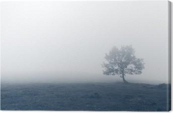 Quadros em tela premium Árvore solitária com névoa