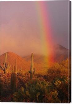 Quadro em Tela Rainbow sunset at the Saguaro National Park, Arizona, USA