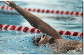 Quadro em Tela Swimming - sport