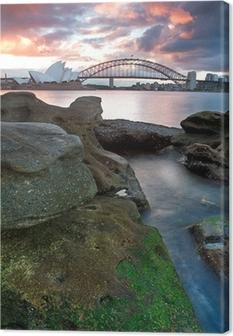 Quadro em Tela Sydney Opera House and harbour bridge