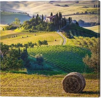Quadro em Tela Tuscany, Italian Landscape