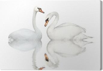 Quadro em Tela Two swans