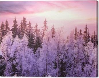 Quadro em Tela Winter forest