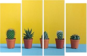 Kaktus på skrivebordet med gul wal Quadtykon