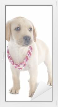 Raamsticker Puppy - labrador retriever